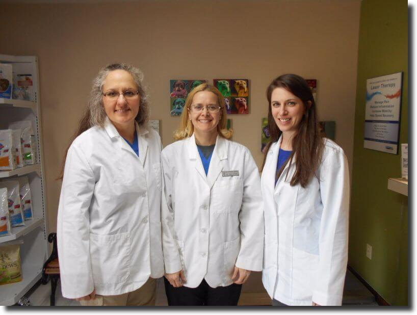 Drs. Shaffer, Ebert and Simonian welcome you to Flint Hills Veterinary Hospital